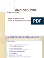 BIOLOGÍA Y GEOLOGÍA Tema 16. Reproducción en animales