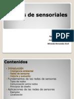 Redes sensoriales