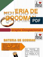 Expo de Bateria de Goodman