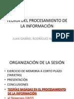 TEORIA DEL PROCESAMIENTO DE LA INFORMACIÓN