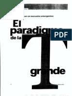 6 Paradigma de T Grande Alejandro Ruelas