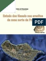 Fósseis na Prainha