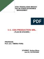 Plan de Afacere Sc. Ces Production Srl.