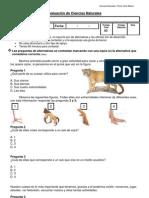 evaluacion cs.naturales cuarto básico