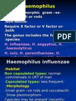 H.influenzae Modified 2012