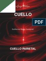 cuelloparietaltriangulos-100924071808-phpapp01