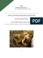 Cultivo de La Rana Toro