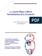 IV. Hemodinamica
