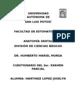 Tercer Parcial. Anatomia Dental