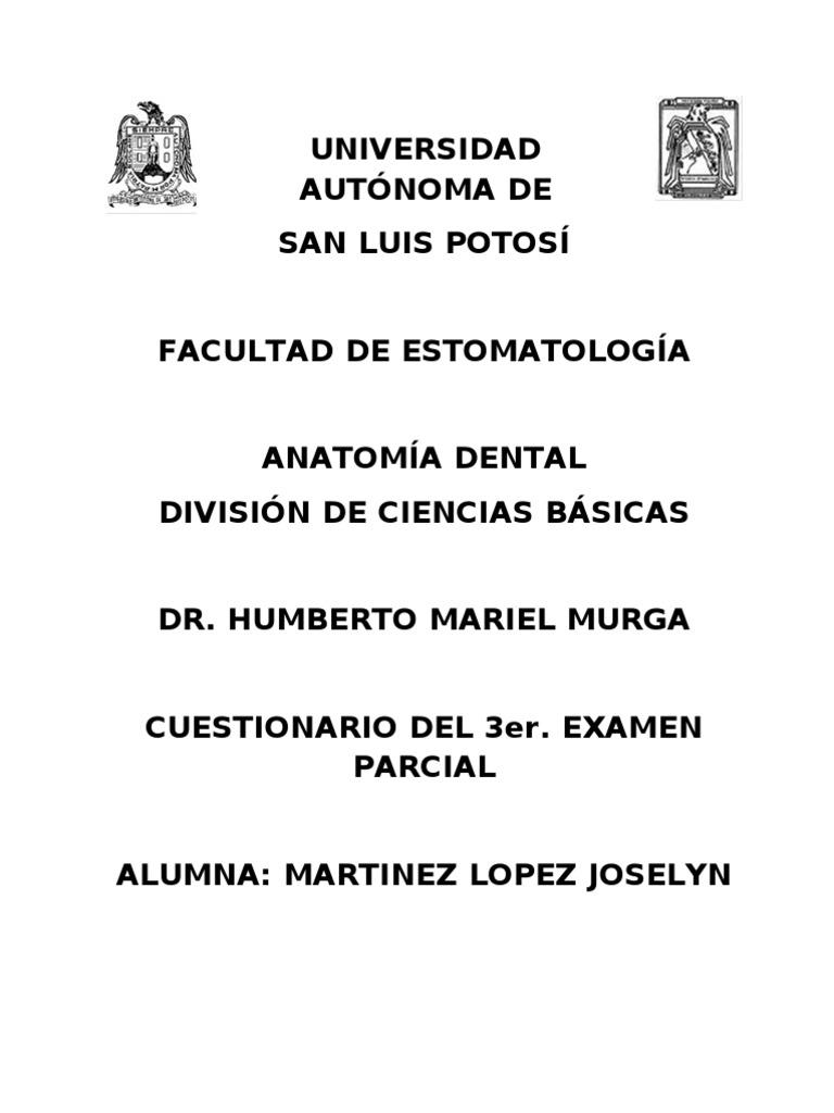 Vistoso Exámenes De Anatomía Ilustración - Anatomía y Fisiología del ...