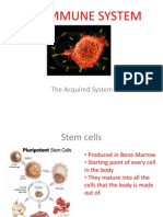 The Acquired Immune System