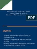 vascularización del sistema nervioso