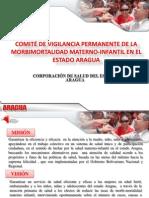 Comite MMI ARAGUA 2012
