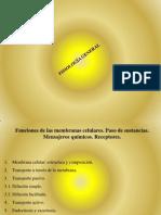 4.2 Movimiento de sustancias a trav%C3%A9s de membranas celulares BUENNNNNO[1]