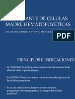 Trasplante de Celulas Madre Hematopoyeticas