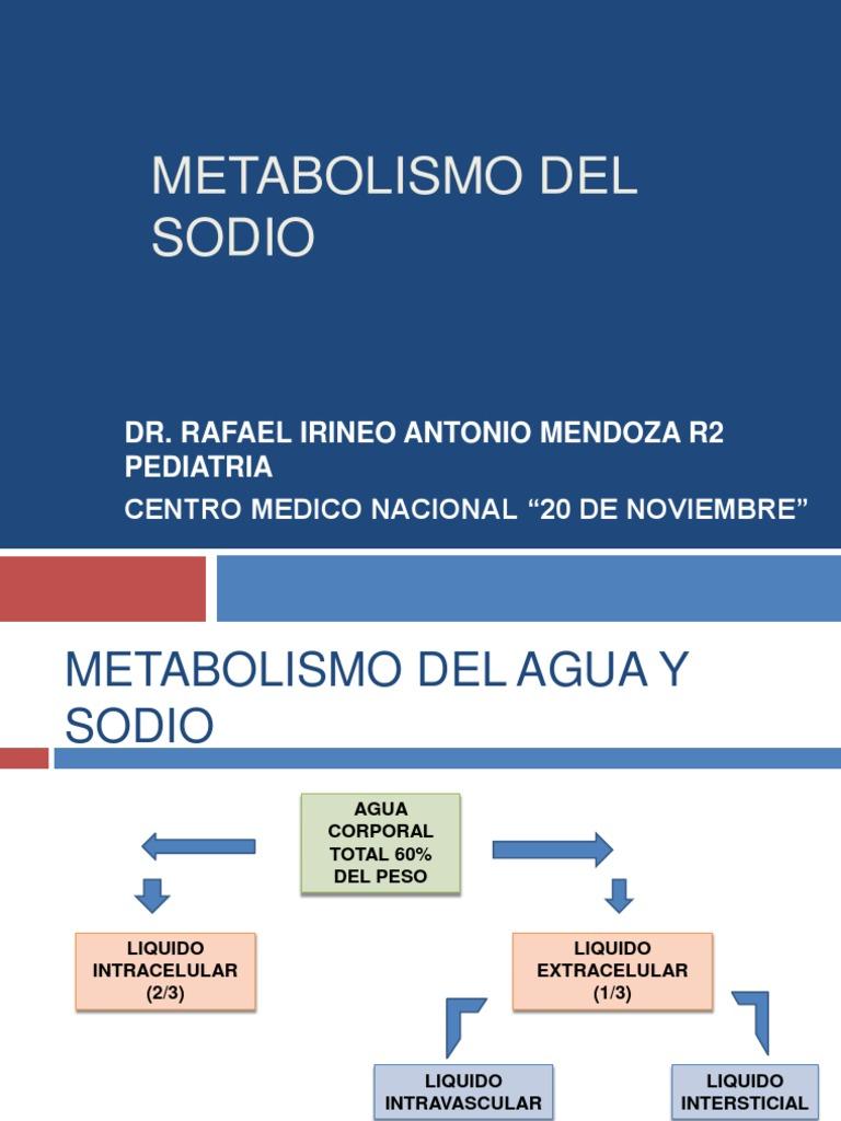 Ocho alternativas a que es metabolismo ing