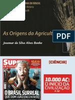 As Origens da Agricultura