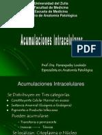 Acumulaciones Intracelulares