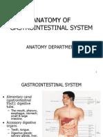 ANATOMI SISTEM PENCERNAAN by dr. Rifal
