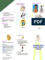 Leaflet Cairan