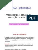 Sistema Nervoso Sensorial Somatico