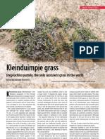 Kleinduimpie Grass v95 March 2009