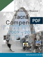 compendio estadístico 2010