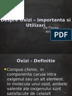 Despre Oxizi – Importanta si Utilizari (2)