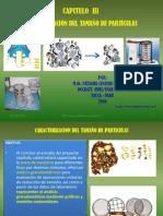 38287906 Capitulo III Caracterizacion de Tamano de Particulas