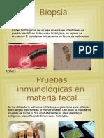 exposicion de parasitologia