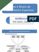 01_Fases_e_N_veis_do_Rendimento_Esportivo (1)