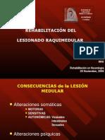 Rhb Lesion Medular