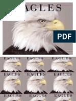 Eagles Need a Push (1)