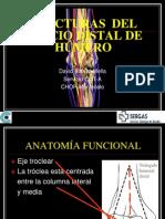 Fx Humero Distal