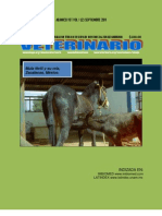 03mosaicismo Linfocitario de Equus Mulus Fertil y