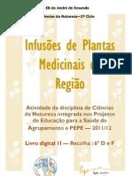 Livro Digital II