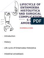 Lifecycle of Entamoeba