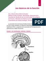 1.Principios Basicos de La Funcion Tiroidea
