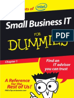 Small Bussines IT for Dummies