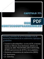 capitulo 77