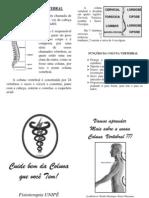 Folder - A Coluna Vertebral