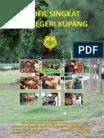 Profil Singkat SPPN KPG