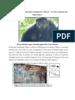 proyecto ecoturismo-Balancan