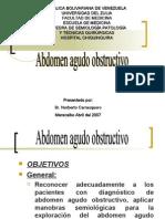 abdomenagudoobstructivoseminario-090830202925-phpapp01
