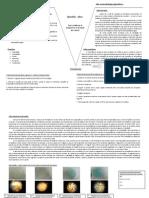 Geologia - Influência da temperatura na formação dos cristais