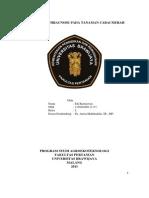 PDF Tugas Uts