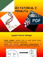 Ligação Fatorial e Permuta-Bio