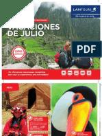 PDF DOM