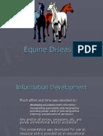 Horse Diseases