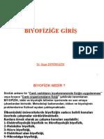 75501138-DersI2006biyofizik